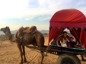 Camel-Cart in der Thar-Wüste nahe Pushkar