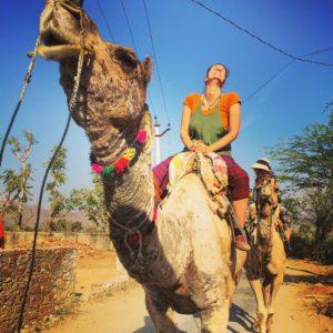 Kamelsafari in Indien