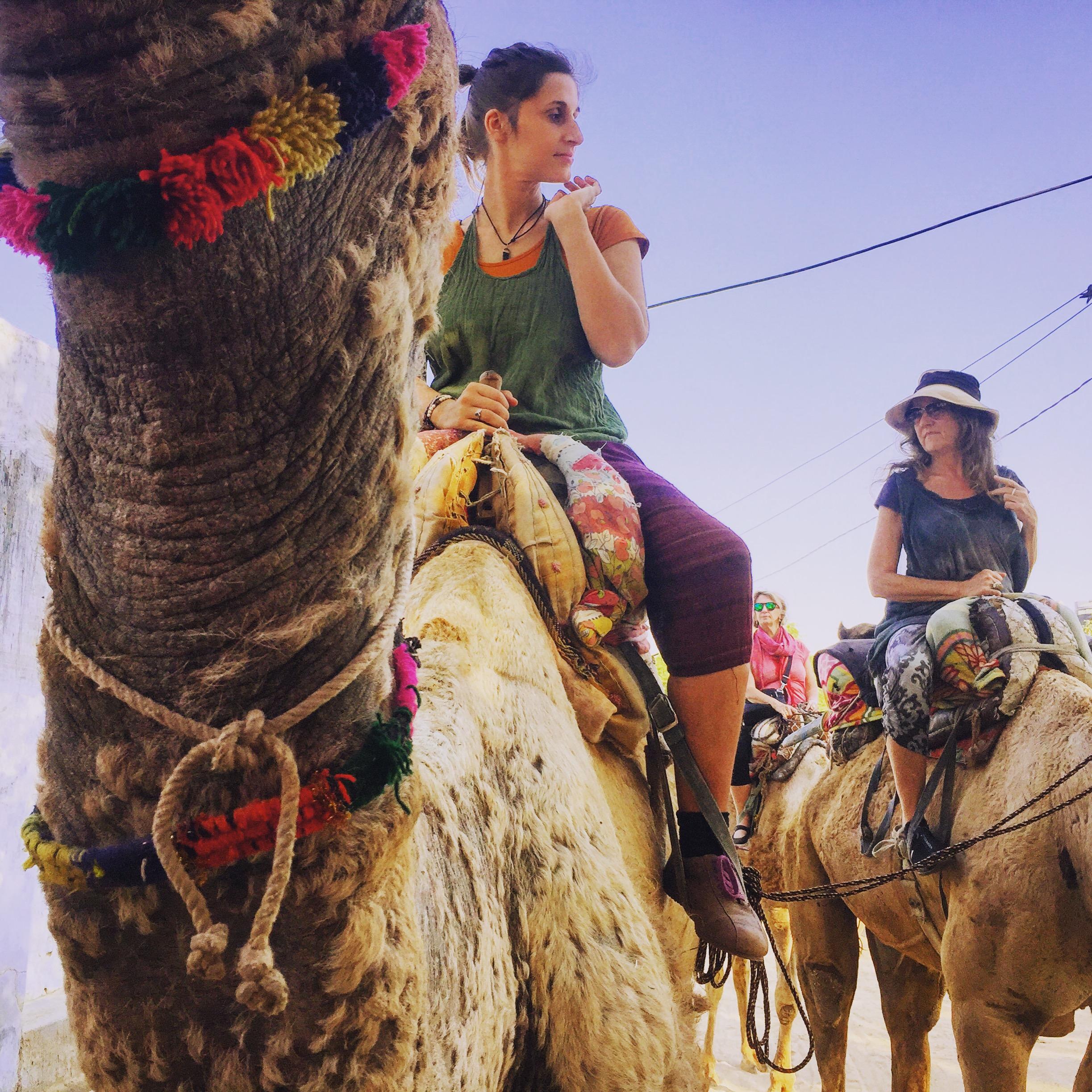 2 Frauen auf Kamelen